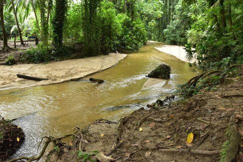 Le lendemain, le cours d'eau a déjà diminué