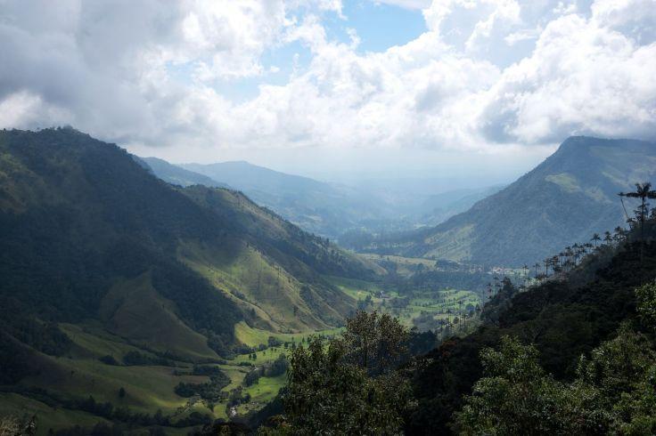 Mirador sur la vallée de Cocora
