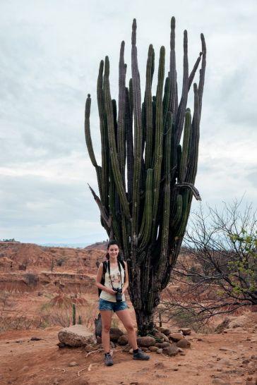 Ils sont vraiment grands ces cactus!