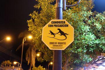 Attention aux iguanes