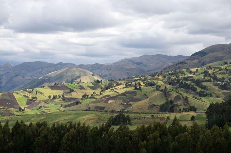 Vallées cultivées aux alentours du Chimborazo