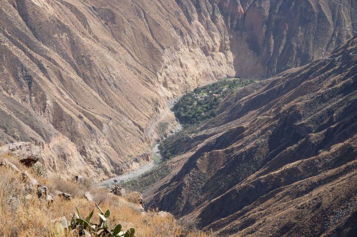 Vue sur l'oasis Sangalle depuis le haut du canyon