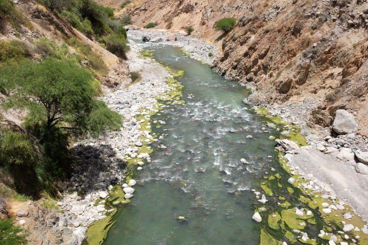 Rivière dans le canyon de colca